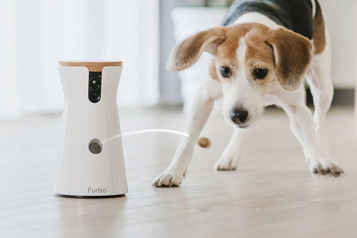 Furbo Dog Camera