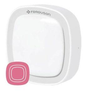 Ferguson Motion Sensor FS1MS