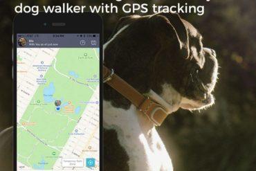 obroża dla psa z GPS