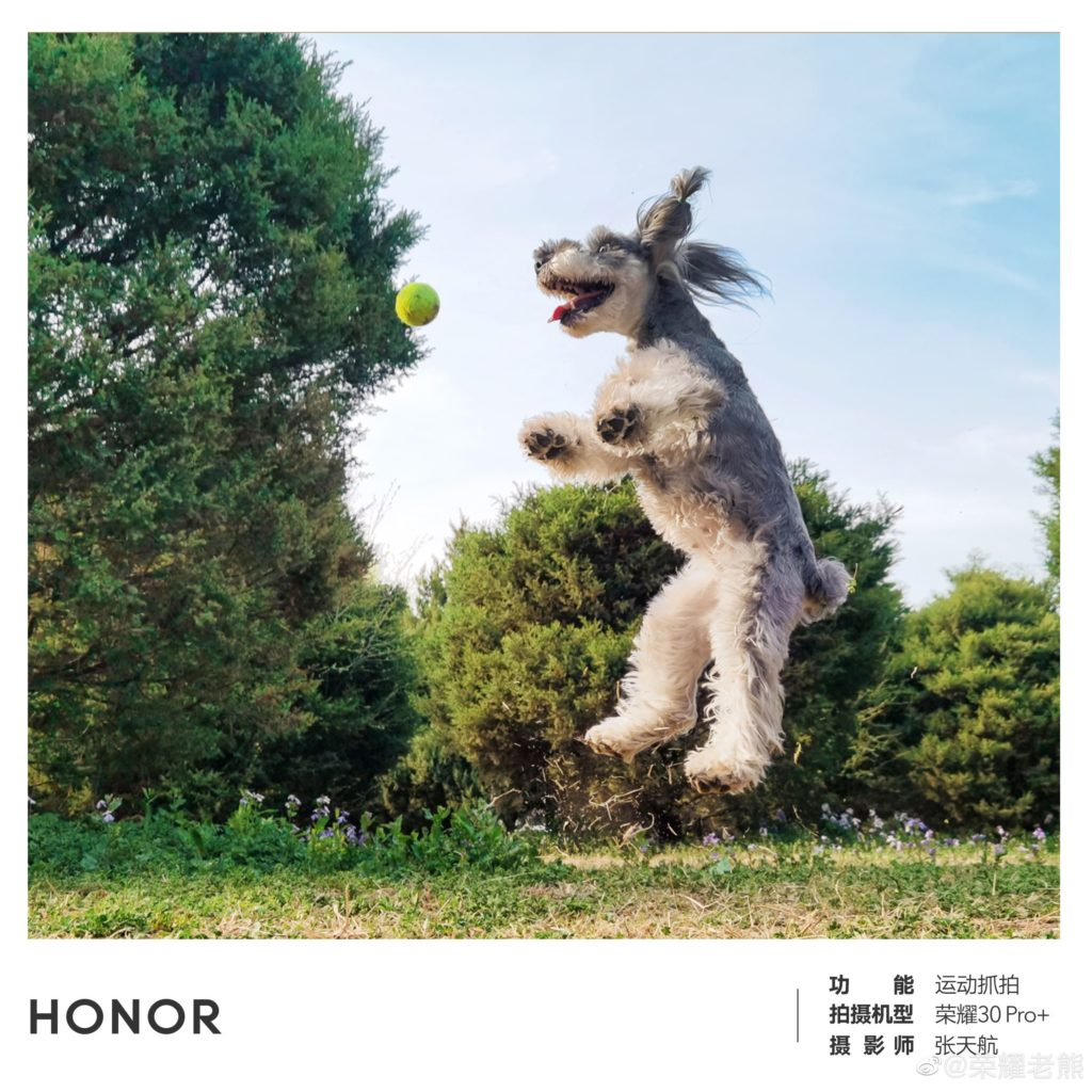 honor 30 pro aparat
