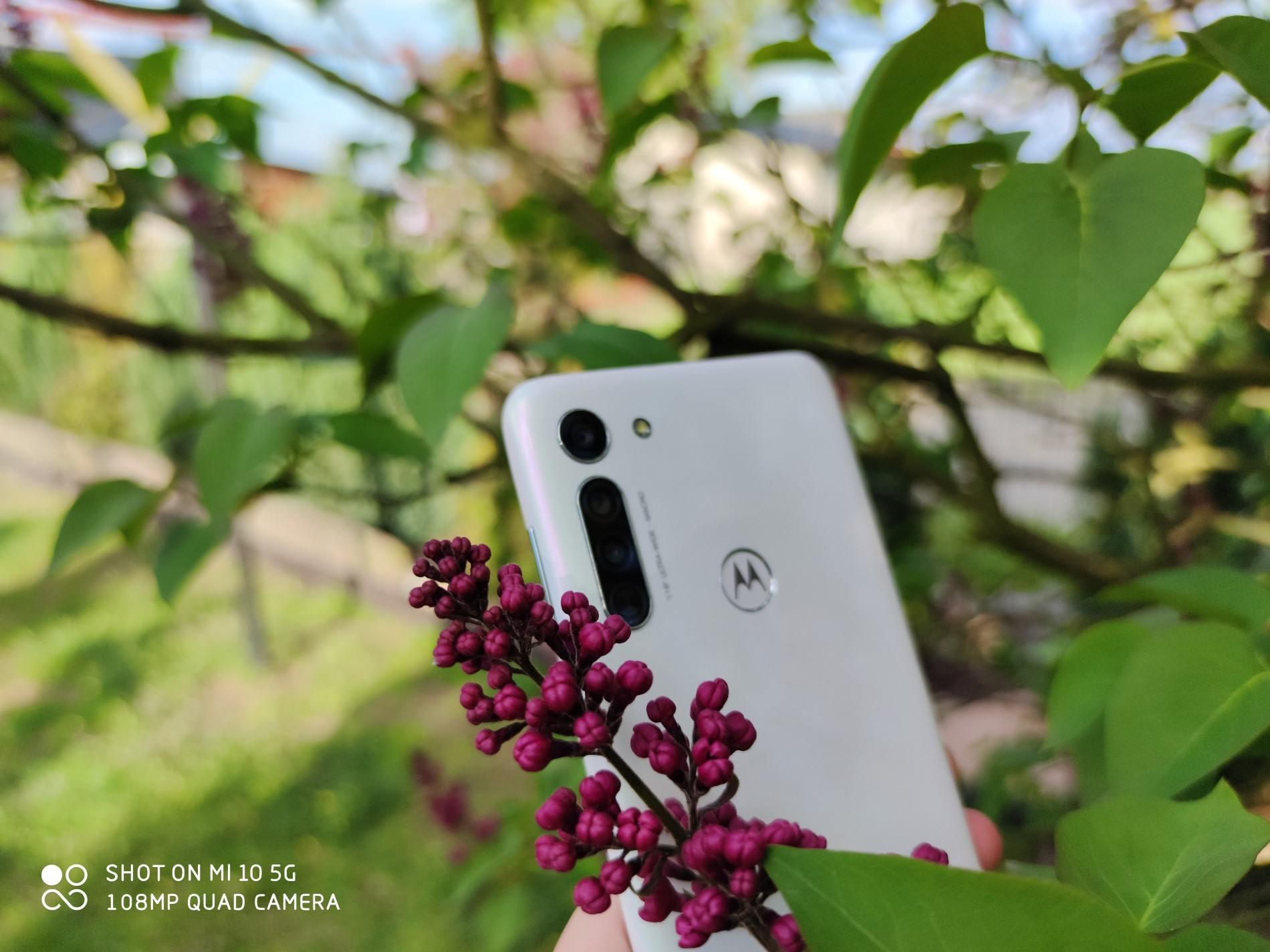 Zdjęcie zrobione Xiaomi Mi 10